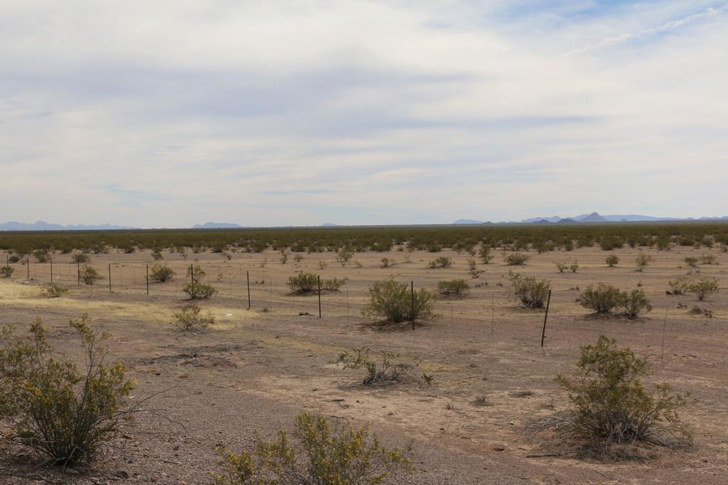 Wüstenebene in Arizona