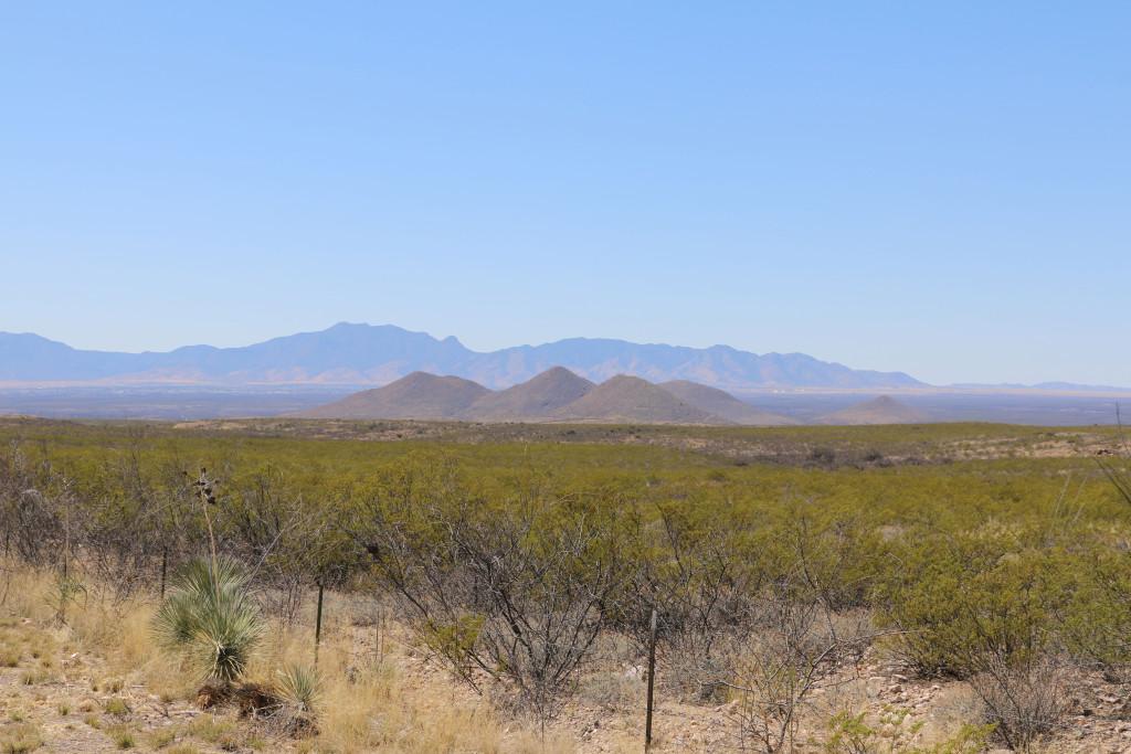 Hügelkette bei Tombstone
