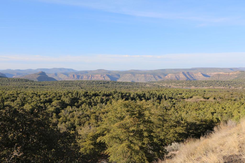 Salt Rover Canyon von weitem