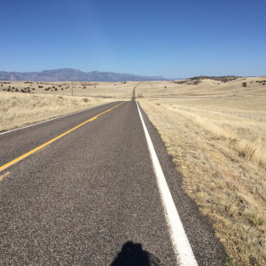 Strasse und Prärie in New Mexico