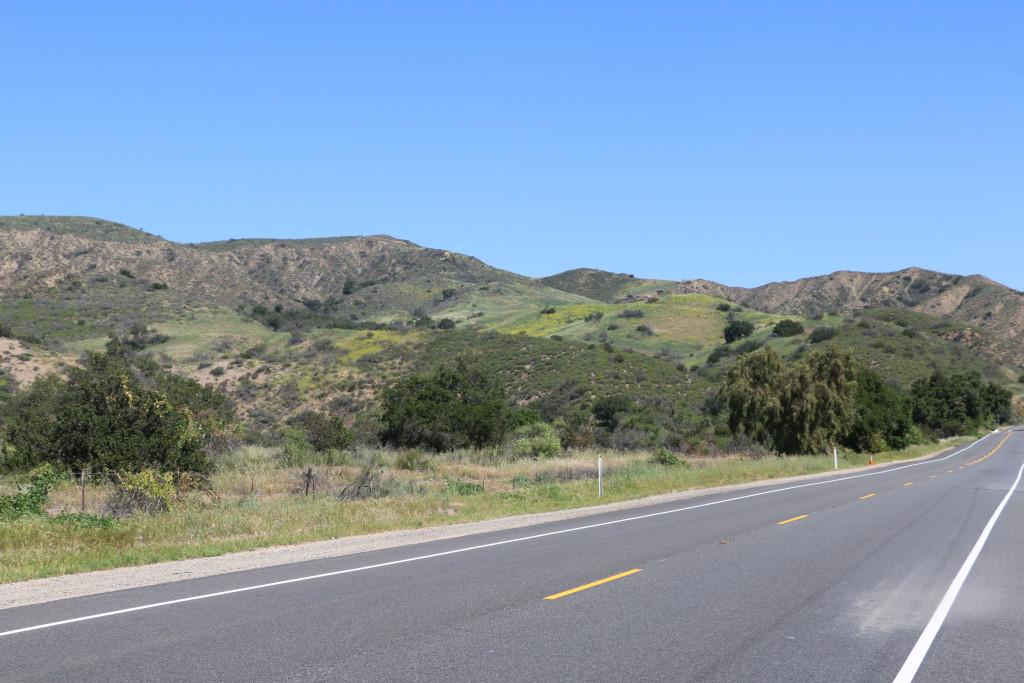 Frühlingsgrün im San Juan Canyon