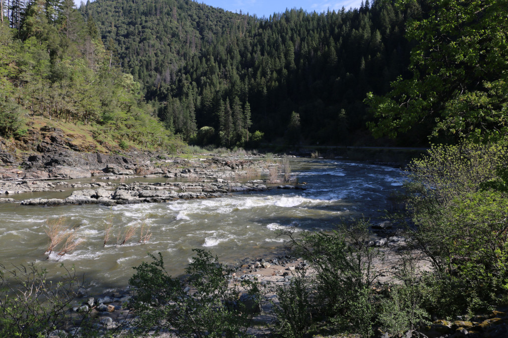 Klamath River 1
