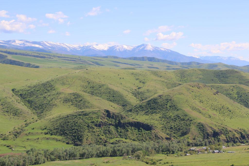 Sanfte Hügel 1