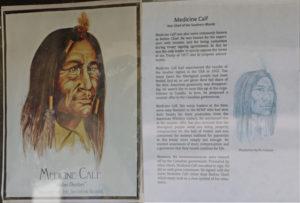 Medicine Calf